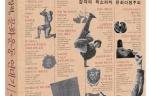 [권력에 맞선 상상력, 문화운동 연대기] - 양효실
